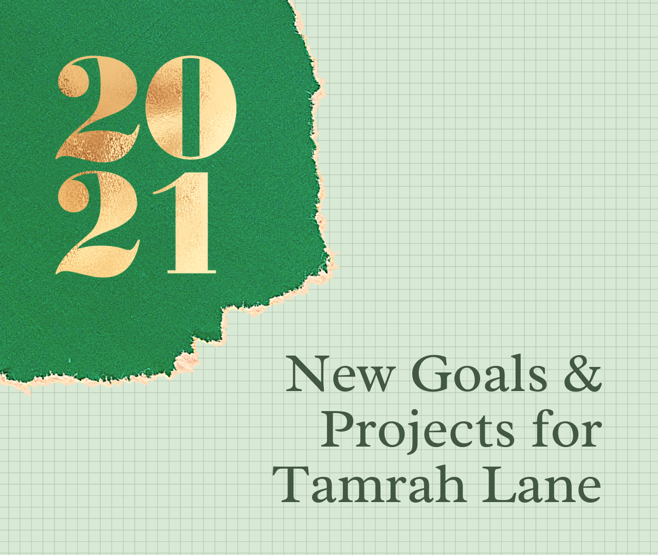 2021 Goals and New Projects for Tamrah Lane